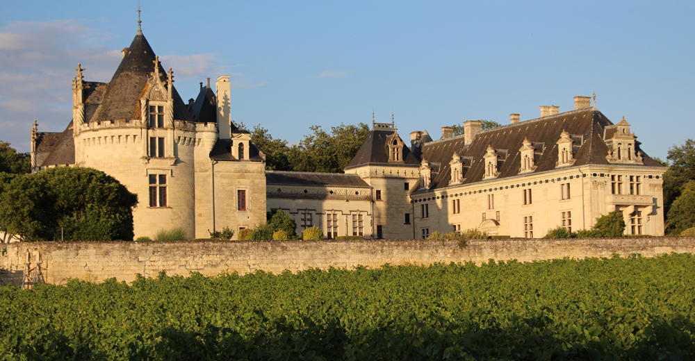 The Chateau de Brézé